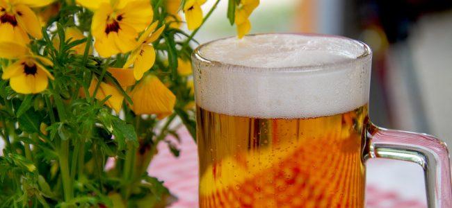 пиво, бренд пива, Bier, Biermarke,